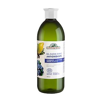 Antioxidant Shower Gel With Blueberry And Argan Extract Sensitive Skin 600 ml of gel
