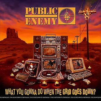 Public Enemy - What You Gonna Do When The Grid Goes Down? Vinyl