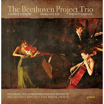 L.V. Beethoven - The Beethoven Project Trio [CD] USA import