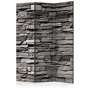 Paravento - Stony Facade [Room Dividers]