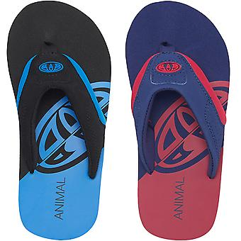 Animal Boys Kids Jekyl Slice Casual Slip On Pool Beach Summer Sandals Flip Flops