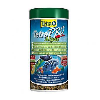 Tetra TetraPro Algae (Fish , Food , Warm Water)