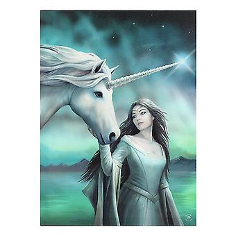 Anne Stokes North Star Canvas -laatta