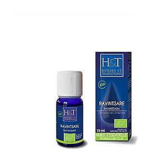 Ravintsara Essential Oil (Cinnamomum camphora) Organic 10 ml of essential oil