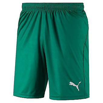 PUMA LIGA pantaloni scurți Core cu scurt
