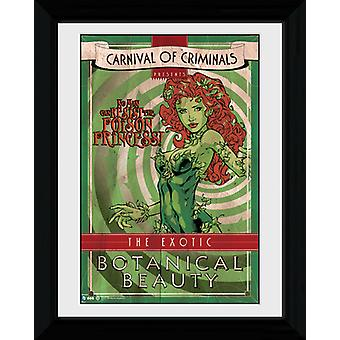 Batman Circus Poison Ivy incorniciato stampa 40x30cm Collector