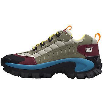 Caterpillar Intruder Oxford P724550 trekking all year men shoes