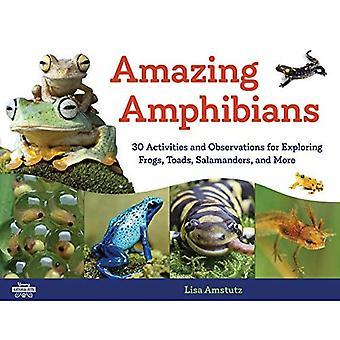 Upeat sammakkoeläimet: 30 toimintaa ja havaintoa sammakoiden, sammakoiden, salamanterien ja paljon muuta