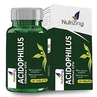 High strength lactobacillus acidophilus 50bn cfu - 120 probiotic tablets - easy to swallow and vegan