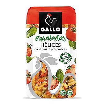Espirales Gallo Ensaladas Tomate Espinacas (450 g)
