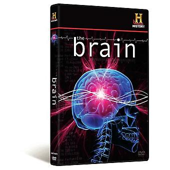 Brain - The Brain [DVD] USA import