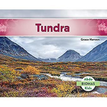 Tundra (Tundra Biome) by Grace Hansen - 9781624026904 Book