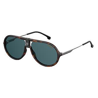 Carrera 1020/S 086/KU Dark Havana/Blue Sunglasses