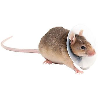 KVP Rodents Saftshield 5.75-7.5 cm / 9.5 Cm (Small pets , Hygiene and Cleaning)
