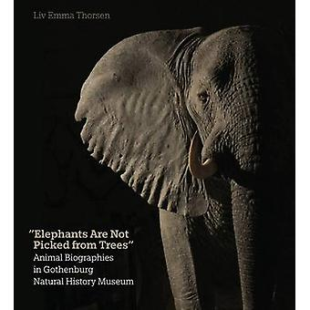Elephants are Not Picked from Trees - Animal Biographies in the Gothen