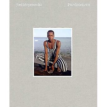 Joel Meyerowitz - Provincetown by Joel Meyerowitz - 9781597114677 Book