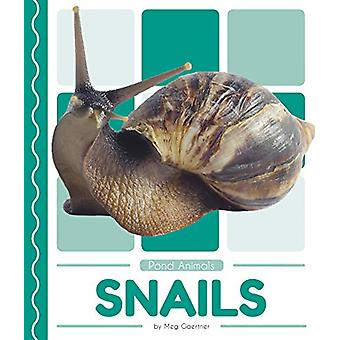 Pond Animals - Snails by Meg Gaertner - 9781641855815 Book