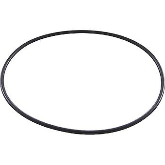 Jandy dyrekretsen W150181 celle O-Ring