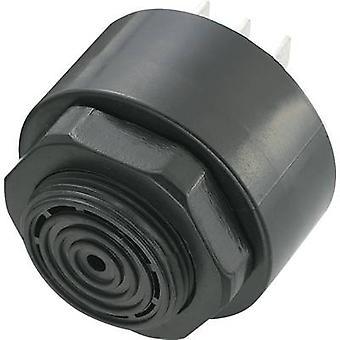 KEPO KPI-G4310-6290 Piezo buzzer Noise emission: 80 dB Voltage: 12 V Continuous acoustic signal 1 pc(s)