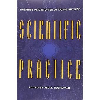 Vitenskapelig praksis: Teorier og historier gjør fysikk