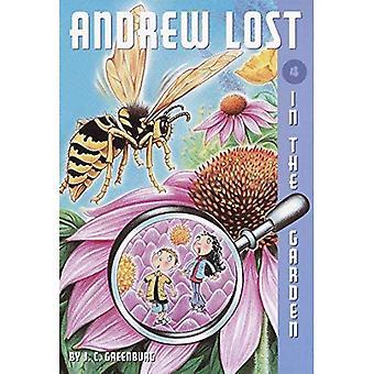 Im Garten: 4 (Andrew verloren)