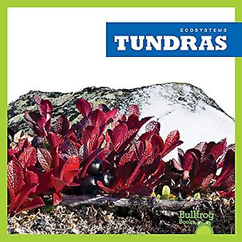 Tundras (Ecosystems)