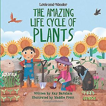 The Amazing Life Cycle of Plants by Kay Barnham - 9781438050430 Book