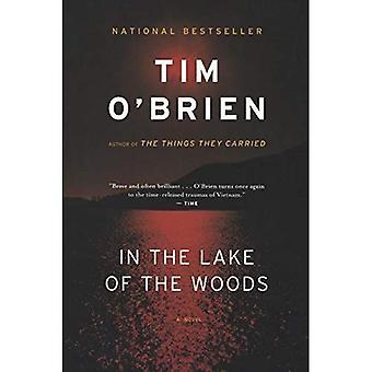 Dans le lac des bois