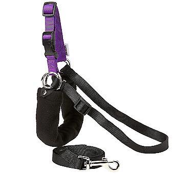 Ancol Pure Dog Listener Harness & Lead Set