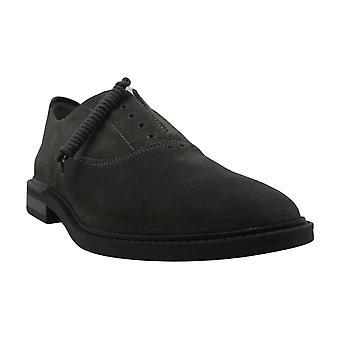 الصمت الجراء الرجال & ق أحذية ديفيس زلة على جلد الغزال الدانتيل حتى فستان أكسفورد
