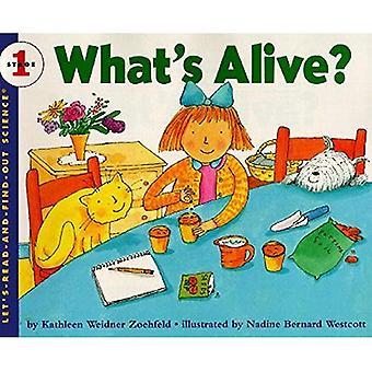 Was ist Leben? (Lasst uns lesen-&-Find-Out Wissenschaft)