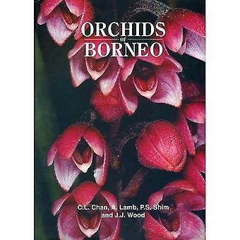 Storczyki Borneo Tom 1: wstęp i wybór gatunków