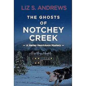 De geesten van Notchey Creek