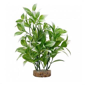 Fluval Weiße Ludwigia Pflanze (Fische , Aquariumsdeko , Künstliche Pflanzen)