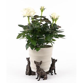 Potty Feet Decorative Chihuahua Themed Plant Pot Feet Bronze Color Set of 3