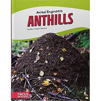Anthills