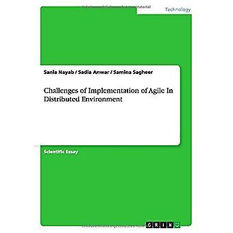 Herausforderungen bei der Implementierung von Agile in distributed Environment
