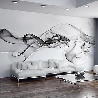 3d-seinämaalaus kangas savusumu - taidesuunnittelun taustakuva olohuoneeseen