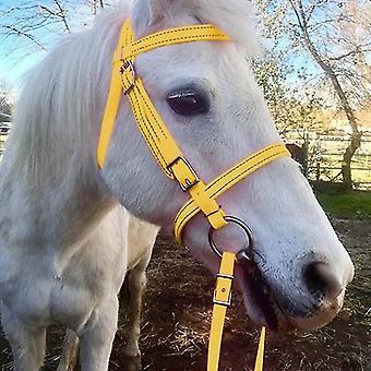 Horse Head Collar Pp Thickened Adjustable Safety Halter Riding Belt Training