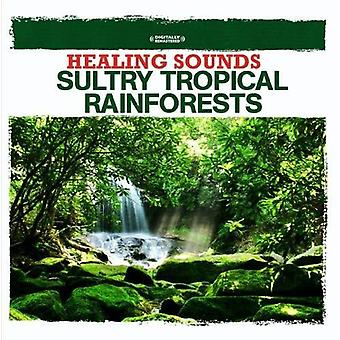 Nature Sounds - Healing Sounds-Sultry Tropical Rainforests [CD] USA import