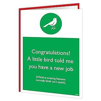 حلوى Brainbox بطاقة الطيور الوظيفة الجديدة