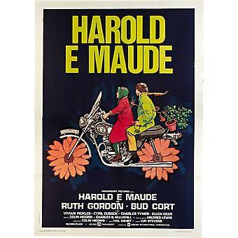 Harold ja Maude elokuvan juliste (11 x 17)