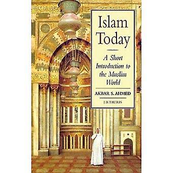 L'Islam aujourd'hui: Une courte Introduction au monde musulman