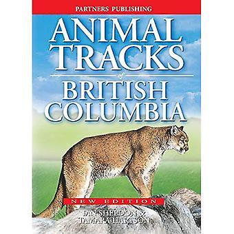 Tierspuren von British Columbia