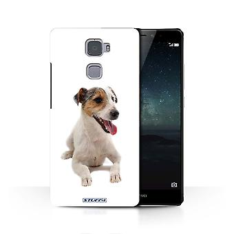 STUFF4 Case/Cover for Huawei Mate S/Jack Russell Terrier/Dog Breeds