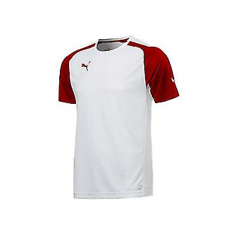 Puma Speed Jersey 70190612 training summer men t-shirt