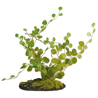 Zoo Med Fern Button (Reptiles , Decoration , Artificial Plants)