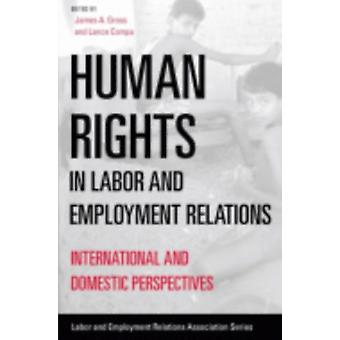 Human Rights in Labor and Employment Relations  International and Domestic Perspectives by Edited by James A Gross & Edited by Lance Compa