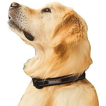 Regatta Dog Premium Hardwearing Quick Release Hundhalsband