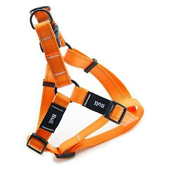 Bull Petral Orange Fluor (Dogs , Collars, Leads and Harnesses , Harnesses)